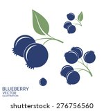 blueberry. icon set. isolated... | Shutterstock .eps vector #276756560