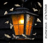 Vintage Street Light And Moths...