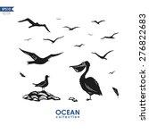 Set Of Different Sea Birds ...