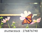 Stock photo monarch butterfly on a flower vintage background 276876740