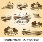 vector design elements with... | Shutterstock .eps vector #276920150