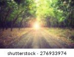 Blurred Rainforest  Nature In...