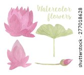 watercolor lotus flowers and... | Shutterstock .eps vector #277018628
