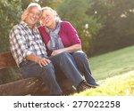 Senior Couple In A Park Sittin...