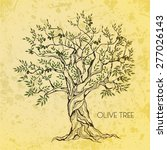 olive tree on vintage paper.... | Shutterstock .eps vector #277026143