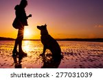 Hipster Girl Playing With Dog...