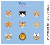 felines collection vector... | Shutterstock .eps vector #277044038