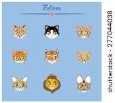felines collection vector... | Shutterstock .eps vector #277044038