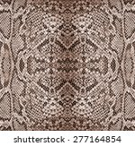 Background   Texture Of Snake...