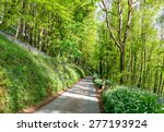 a country lane leading through...