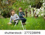 happy brothers on a ladder... | Shutterstock . vector #277228898
