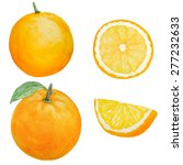 watercolor orange fruit... | Shutterstock . vector #277232633