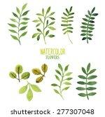 vector floral set. vector hand... | Shutterstock .eps vector #277307048