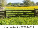 Closed Gate To The Flower Meadow