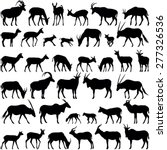 antelope collection   vector... | Shutterstock .eps vector #277326536
