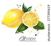lemon watercolor   vector... | Shutterstock .eps vector #277390619