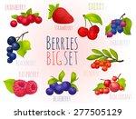 berries  set  big set  with no... | Shutterstock .eps vector #277505129