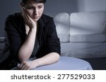 portrait of young woman... | Shutterstock . vector #277529033