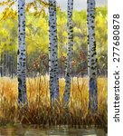 Autumn Birch Trees In Shadow. ...