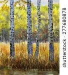 Autumn Birch Trees In Shadow. ...