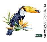 vector watercolor toucan with... | Shutterstock .eps vector #277846013