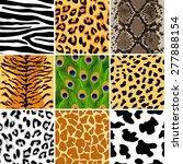 vector illustration of animal... | Shutterstock .eps vector #277888154