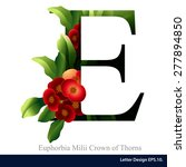 letter e vector alphabet with...