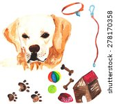 veterinary kit comprising... | Shutterstock .eps vector #278170358
