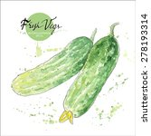 cucumber hand drawn watercolor... | Shutterstock .eps vector #278193314