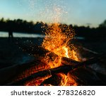 Fire In Nature . Bokeh From Th...