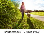 Stock photo young woman and golden retriever walking in the long grass 278351969
