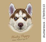 husky animal dog cute face....   Shutterstock .eps vector #278454113