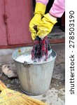 Small photo of Woman's hands in yellow rubber gloves who washes a floor-cloth in a metal bucket with soap water.