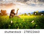 little asian girl in garden... | Shutterstock . vector #278522663