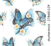 watercolor blue butterfly on...