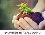 hand and plant | Shutterstock . vector #278760440