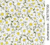 chamomile seamless pattern. | Shutterstock .eps vector #278770730