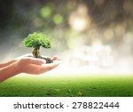 Ecology Concept. Human Plant...