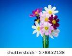 cosmos | Shutterstock . vector #278852138