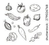hand drawn vector illustration... | Shutterstock .eps vector #279026768