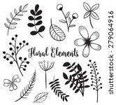 hand drawn flowers and foliage... | Shutterstock .eps vector #279064916
