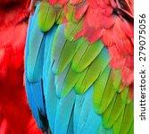 beautiful background of... | Shutterstock . vector #279075056