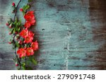 Beautiful Flower On Grunge...