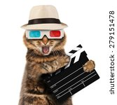 movie director cat with a... | Shutterstock . vector #279151478