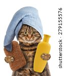 Stock photo funny cat with accessories for bathtub 279155576