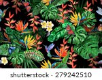 Gorgeous Tropical Plants...