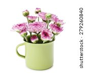 spring purple flower in small... | Shutterstock . vector #279260840
