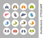 organs icons | Shutterstock .eps vector #279261689