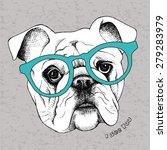 Portrait Of A Bulldog In...