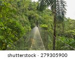 suspended bridge at natural... | Shutterstock . vector #279305900